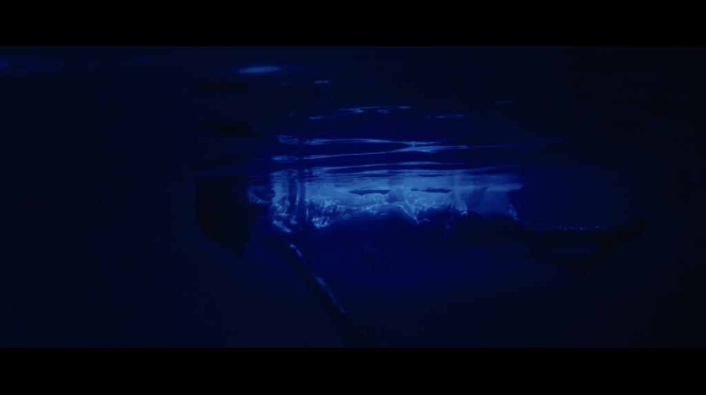 映像制作,水中撮影,機材,ロケ,ミュージックビデオ